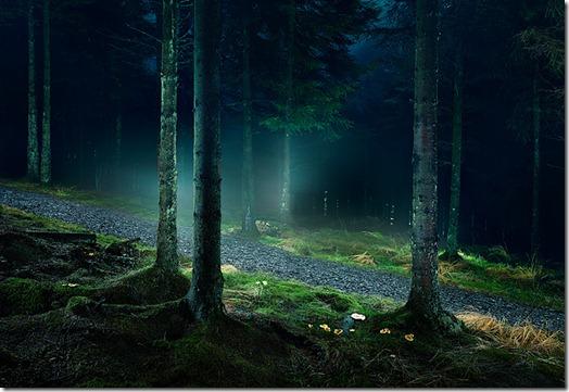paisagens bonitas tim simmons portfólio (12)
