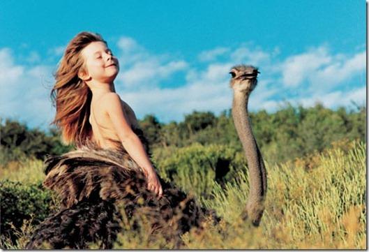 Book livro Tippi pequena garota e sua amizade com Animais selvagens  (2)