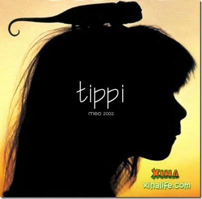 Book livro Tippi pequena garota e sua amizade com Animais selvagens  (17)