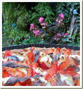 tarte tomate anchois chevre