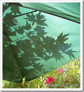ombres sur parasol