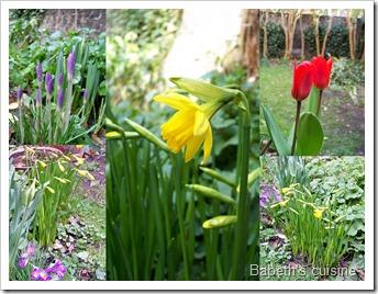 avant goût de printemps