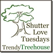 Shutter Love Tuesdays