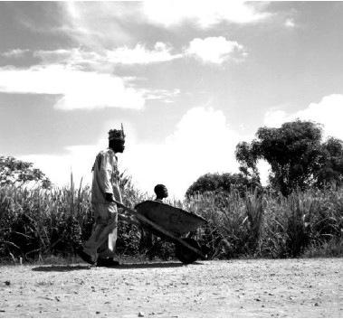 Photo du film Royal Bonbon de Charles Najman, 2001