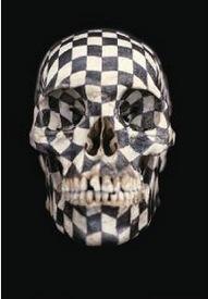 GABRIEL OROZCO, Black Kites, 1997. Mine de plomb sur crâne.