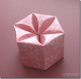 box_1452_cropped