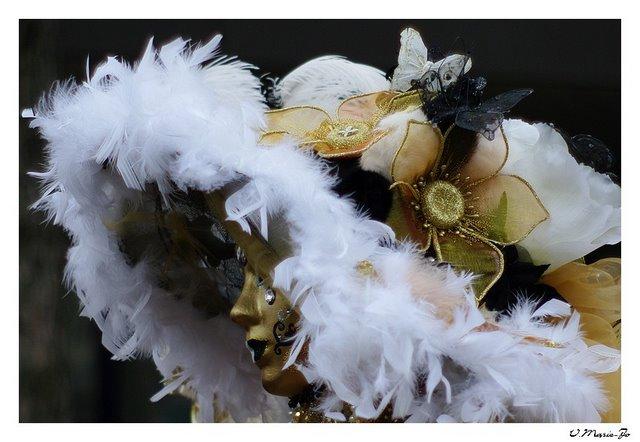 Sortie au Carnaval Vénitien d'Annecy 28/02 - Les Photos - Page 2 IMGP4711%202