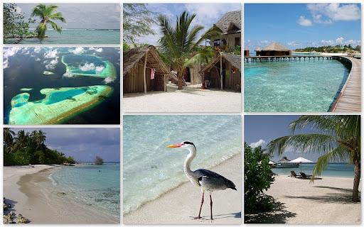 http://lh6.ggpht.com/_tXkn-0hpbd4/TA_RMJ5OTLI/AAAAAAAACtg/_fPUV6cyUio/800-Malediven%203.JPG