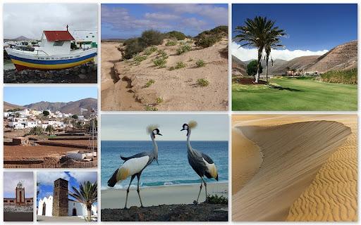 http://lh6.ggpht.com/_tXkn-0hpbd4/TBJB-yEU1kI/AAAAAAAACuY/3UfsOJKlPbI/800-Fuerteventura%202.JPG