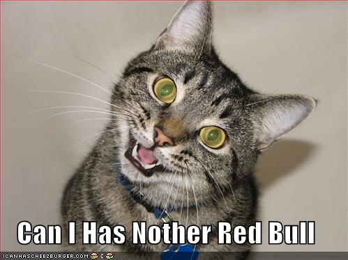 Can I Has Nother Red Bull
