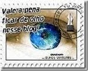 selinho 8