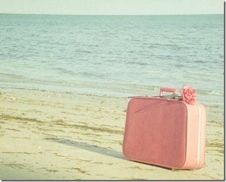 mala de viagem pink