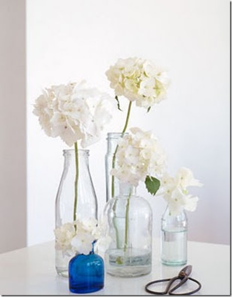 brabournefarm-Hydrangeas - Hallie Burton