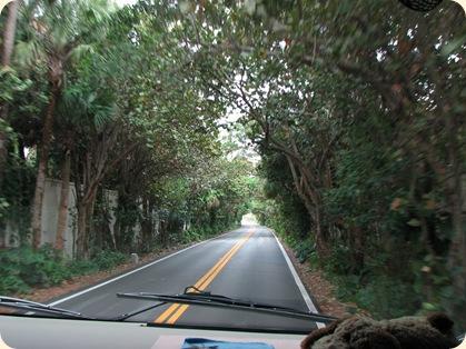 Highway A1A 005