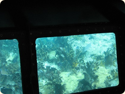 John Pennekamp Glass Bottom Boat 027
