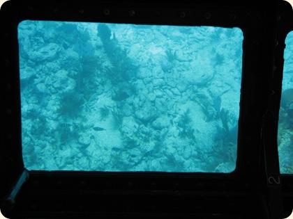 John Pennekamp Glass Bottom Boat 040