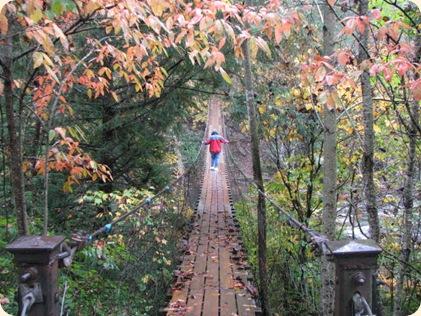 Fall Creek Falls SP 060