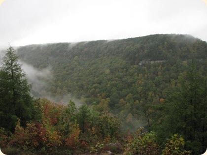 Fall Creek Falls SP 110