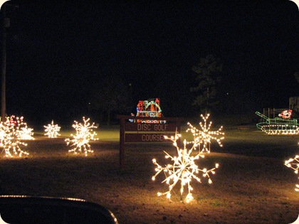 Lighted Christmas Drive 048
