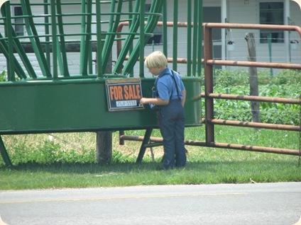 Ilinois Amish 018