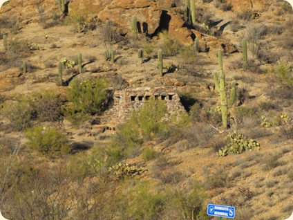 Saguaro National Park 065