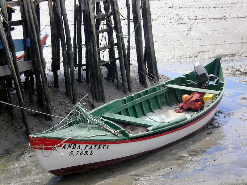 Barco no rio Sado