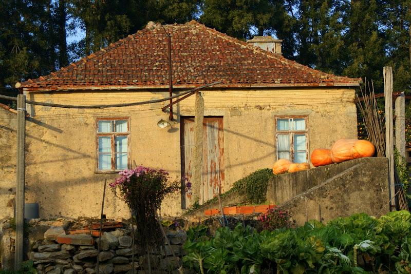 A casa das cabaças