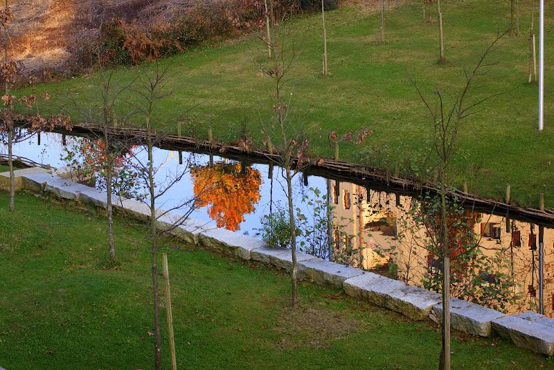 Reflexo do rio Ul