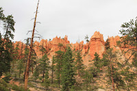 BryceCanyonNP_20100818_0322.JPG Photo
