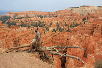 BryceCanyonNP_20100818_0259.JPG Photo