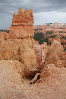 BryceCanyonNP_20100818_0055.JPG Photo