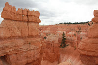 BryceCanyonNP_20100818_0061.JPG Photo
