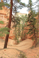 BryceCanyonNP_20100818_0152.JPG Photo
