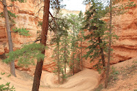 BryceCanyonNP_20100818_0153.JPG Photo