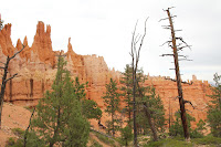 BryceCanyonNP_20100818_0137.JPG Photo