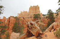 BryceCanyonNP_20100818_0130.JPG Photo