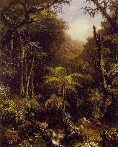 Brazilian-Forest-1864
