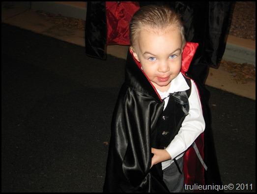 vampire costume, cape, vampire cape, simplicity 2571,