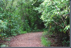 Meadowlark Gardens Trail (2)