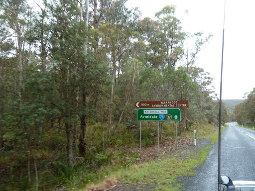Dorrigo New South Wales 2453