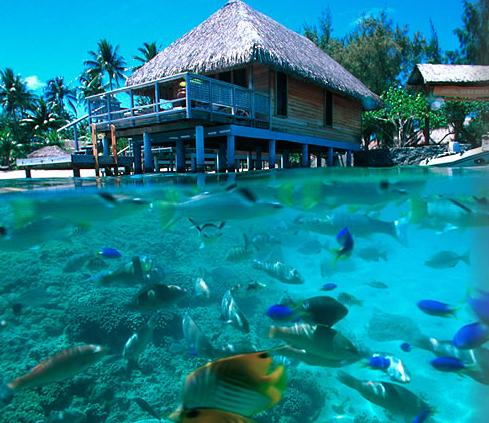 Blogilha Downloads Downloads Ilha De Bora Bora