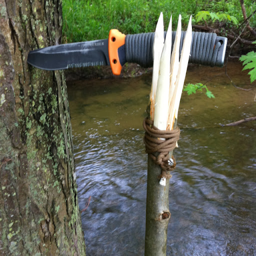 So I decided to take my Bear Grylls knife out for a little hike today and decided to make a spear like Bear makes in his show. It's fairly simple and very affective. It basically quadruples your killing area. Very smart.