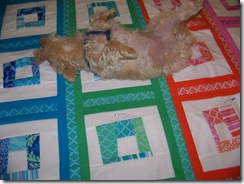 maggie on quilt 3