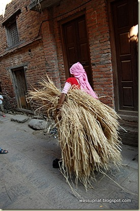 Carrying straw