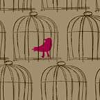 york birdcage.jpg