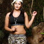 tollywood spicy girls pictures