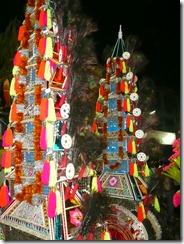 shashti 2009-11-23 104