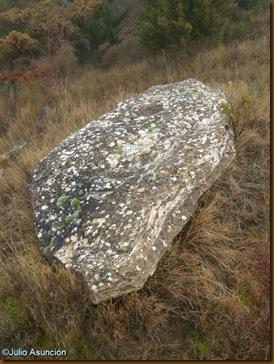Menhir 2 - ruta dolmenes de Artajona