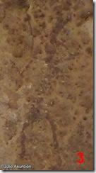 Figura de mujer - arte rupestre levantino - Vall d´Ebo