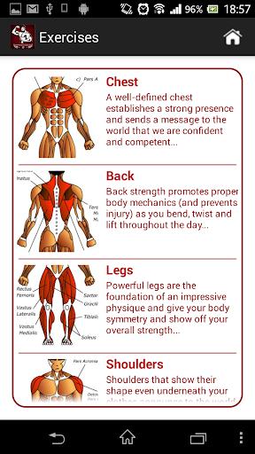 Mega Muscle Gain Workout Pro - screenshot
